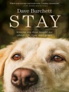 Stay als eBook Download von Dave Burchett