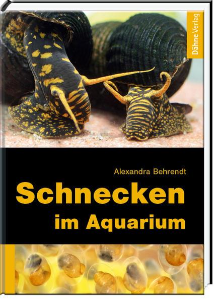 Schnecken im Aquarium als Buch von Alexandra Be...