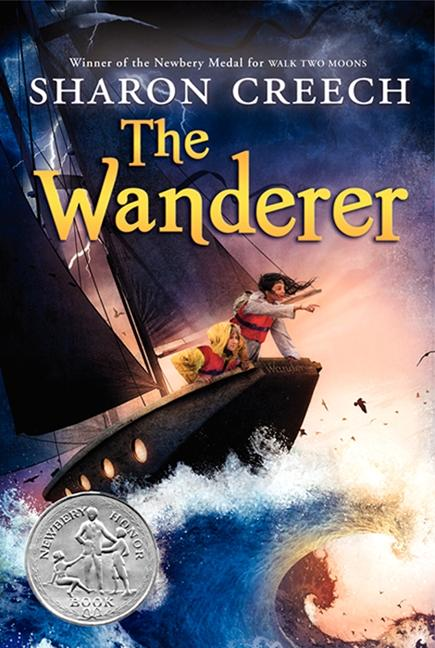 The Wanderer als Taschenbuch