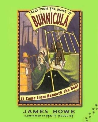 It Came from Beneath the Bed! als Buch (gebunden)