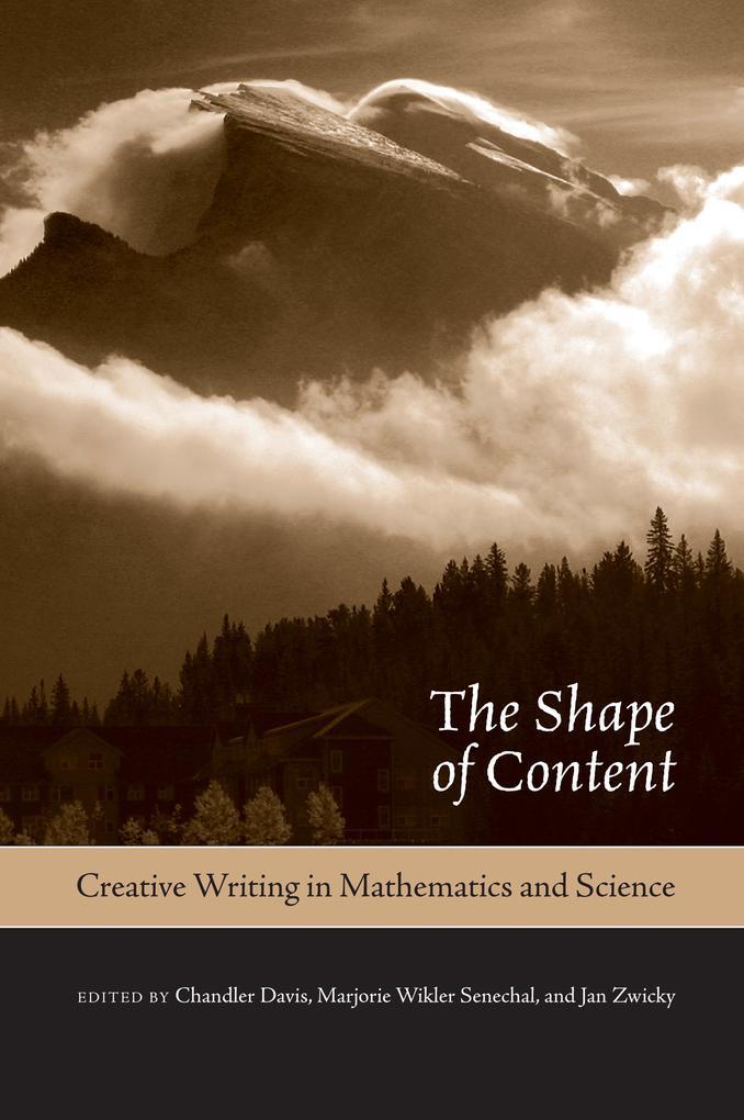 Shape of Content als eBook Download von