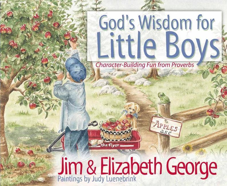 God's Wisdom for Little Boys als Buch