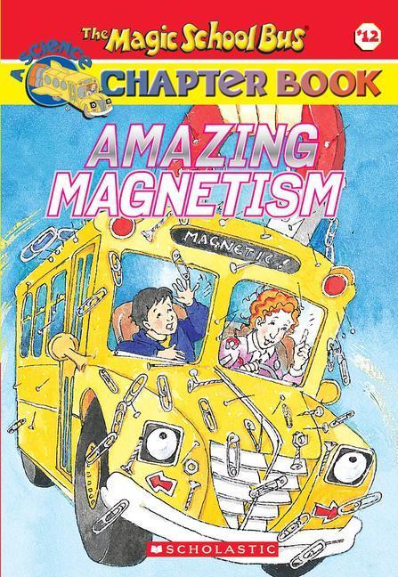 Amazing Magnetism als Taschenbuch
