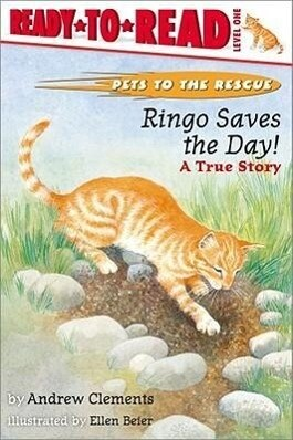 Ringo Saves the Day!: Ringo Saves the Day! als Taschenbuch