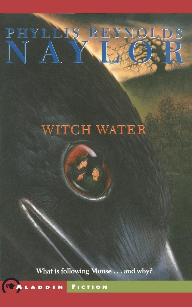 Witch Water als Taschenbuch