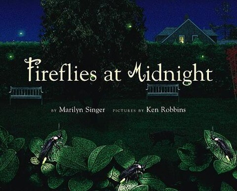 Fireflies at Midnight als Buch