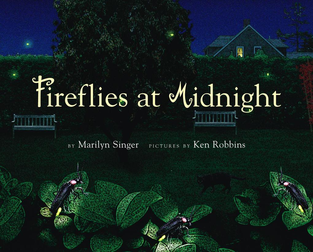 Fireflies at Midnight als Buch (gebunden)