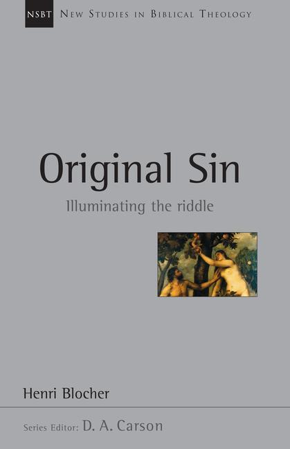 Original Sin: Illuminating the Riddle als Taschenbuch