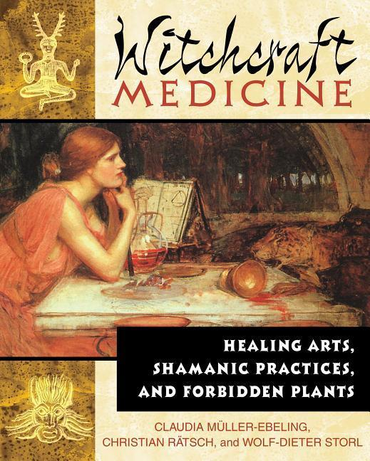 The Witchcraft Medicine: How to Be Healthy and Productive Using Music and Sound als Taschenbuch