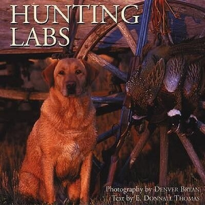 Hunting Labs: A Breed Above the Rest als Buch