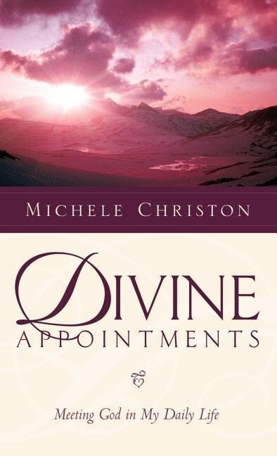 Divine Appointment als Buch
