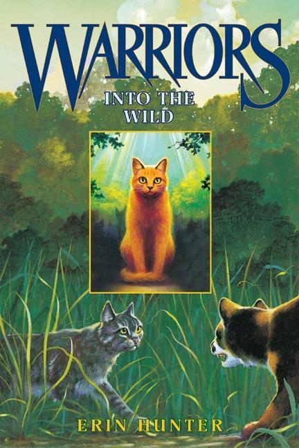 Into the Wild als Buch