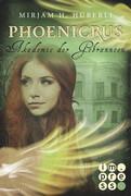 Akademie der Gebrannten (Die Phoenicrus-Trilogie 2)