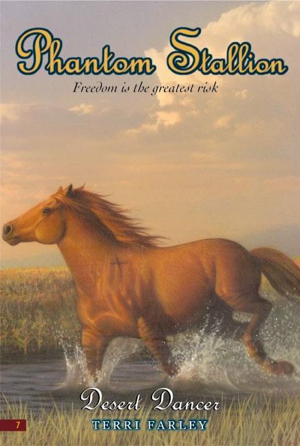 Phantom Stallion #7: Desert Dancer als Taschenbuch