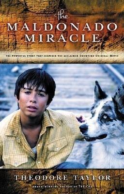 The Maldonado Miracle als Taschenbuch