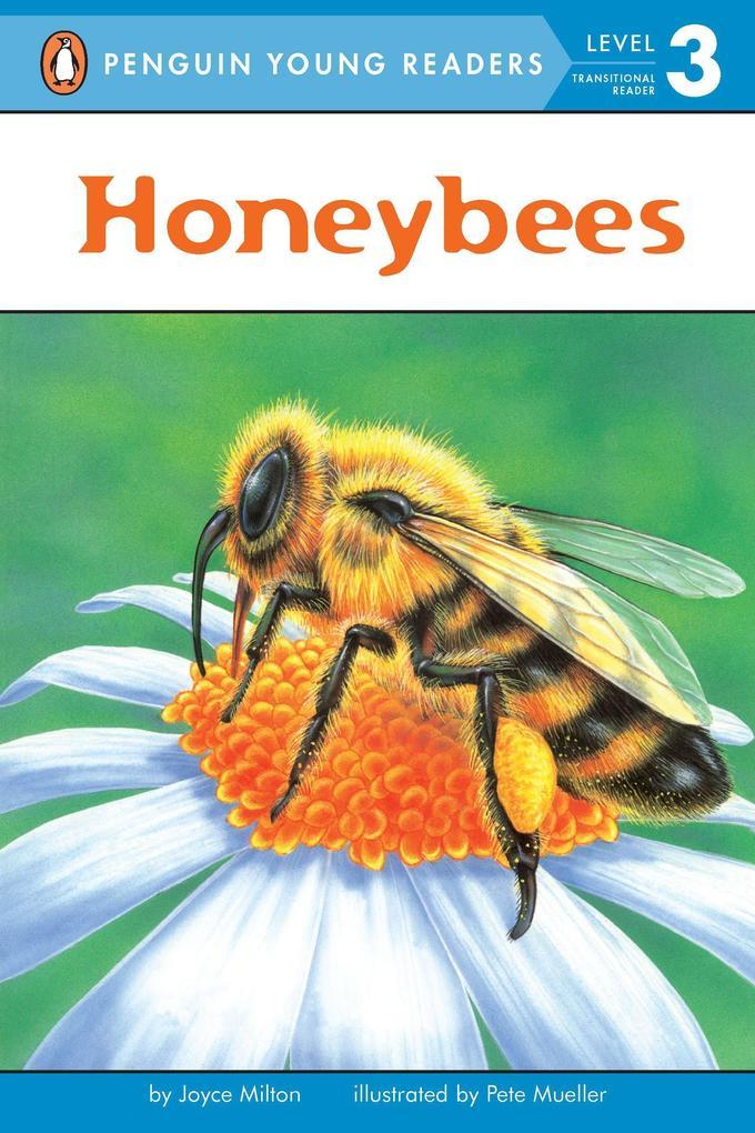 Honeybees als Taschenbuch