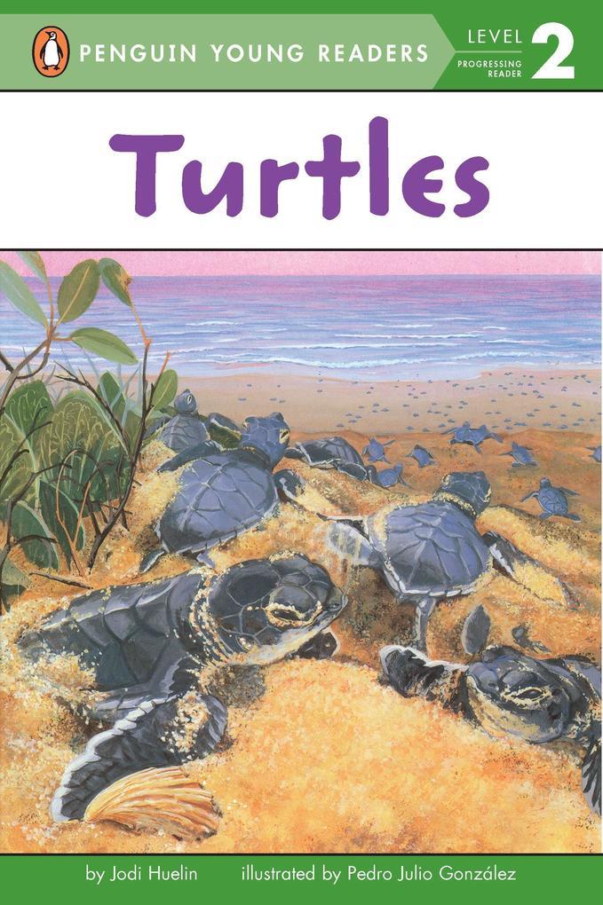Turtles als Taschenbuch