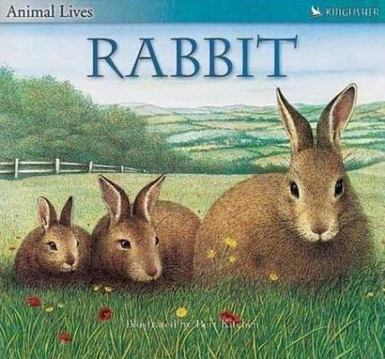 Rabbit als Taschenbuch
