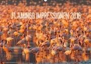Flamingo Impressionen 2016 (Wandkalender 2016 DIN A2 quer)