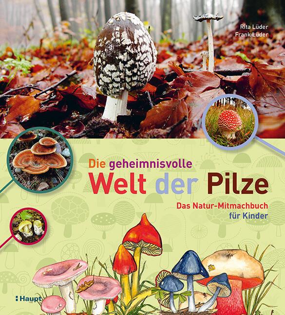 Die geheimnisvolle Welt der Pilze als Buch