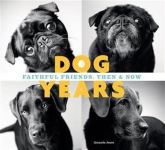 Dog Years als eBook Download von Amanda Jones