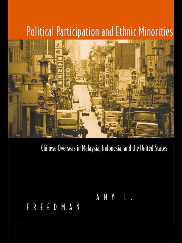 Political Participation and Ethnic Minorities a...