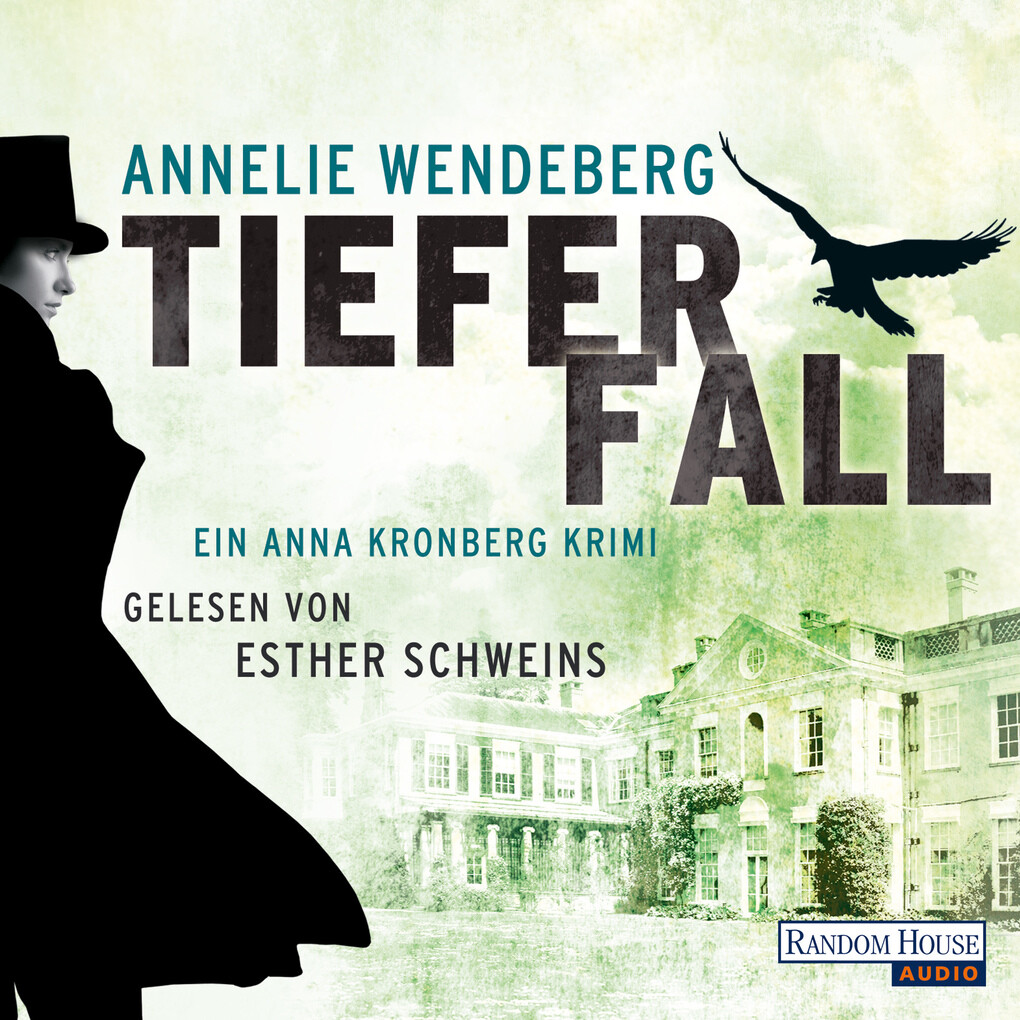 Tiefer Fall als Hörbuch Download