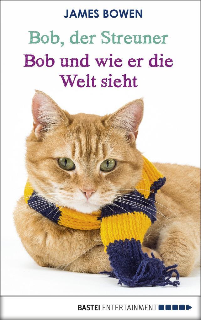 Bob, der Streuner - Bob und wie er die Welt sieht als eBook