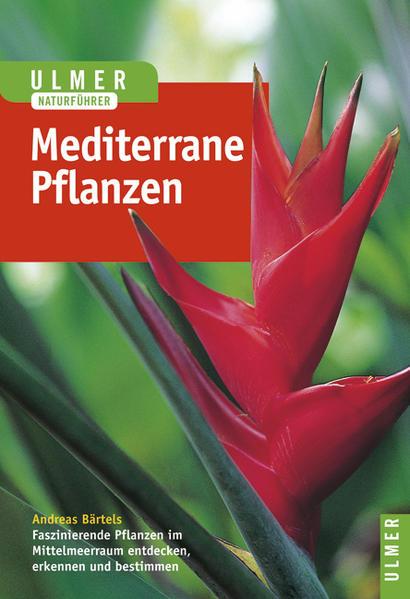 Pflanzen des Mittelmeerraumes als Buch