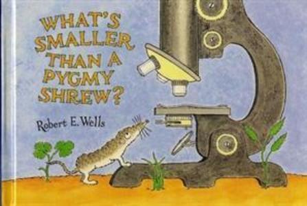 What's Smaller Than a Pygmy Shrew? als Buch