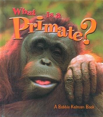 What is a Primate? als Buch