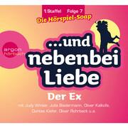... und nebenbei Liebe, Staffel 1, Folge 7: Der Ex