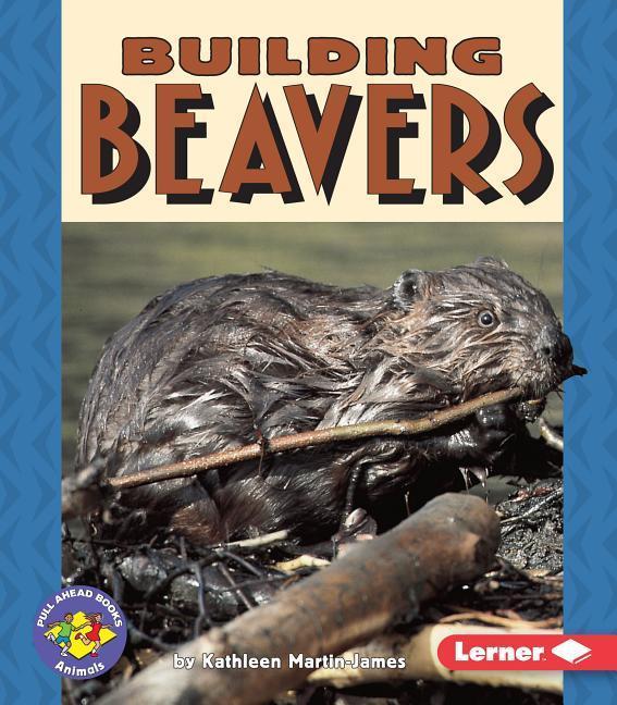 Building Beavers als Taschenbuch
