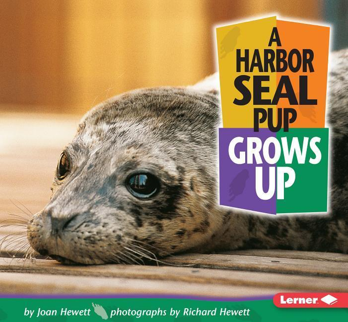 A Harbor Seal Pup Grows Up als Taschenbuch