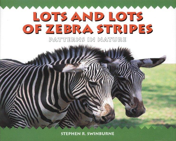 Lots and Lots of Zebra Stripes: Patterns in Nature als Taschenbuch