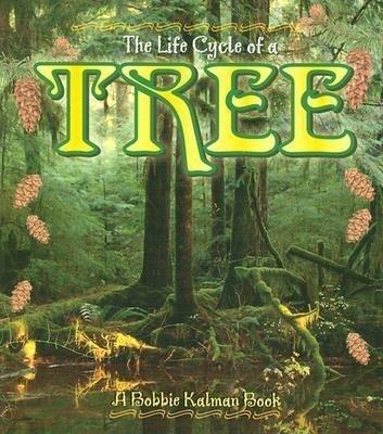 Tree als Taschenbuch