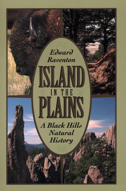 Island in the Plains als Taschenbuch
