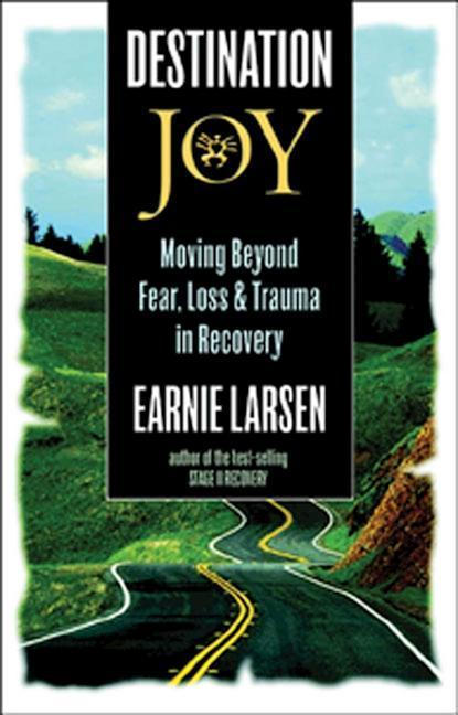 Destination Joy: Moving Beyond Fear. Loss, and Trauma in Recovery. als Taschenbuch