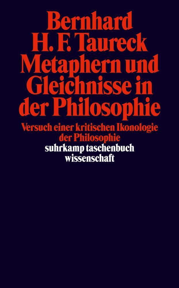 Metaphern und Gleichnisse in der Philosophie als Taschenbuch