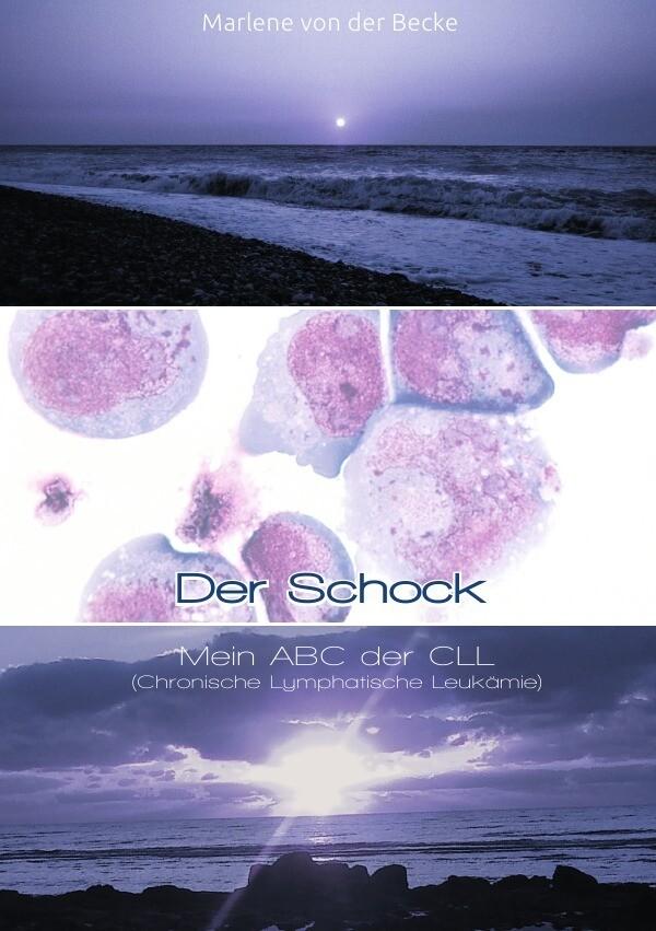 Der Schock als Buch von Marlene von der Becke