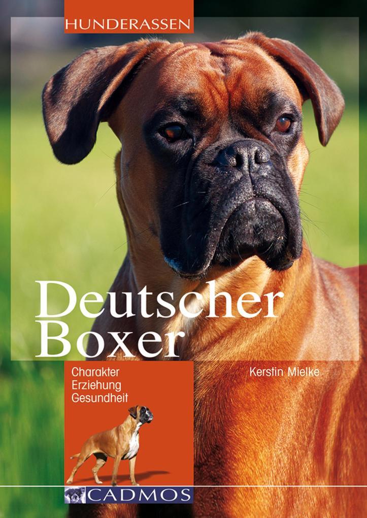 Deutscher Boxer als eBook Download von Kerstin ...