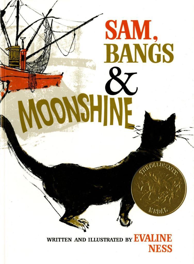 SAM BANGS & MOONSHINE als Taschenbuch