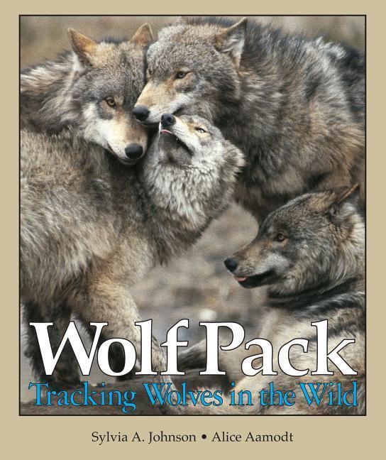 Wolf Pack: Tracking Wolves in the Wild als Taschenbuch