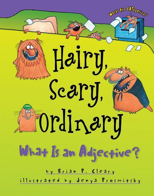 Hairy, Scary, Ordinary: What Is an Adjective? als Buch
