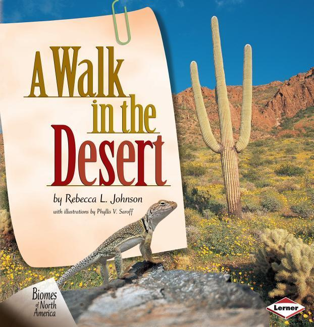 A Walk in the Desert als Buch