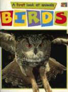 Birds als Taschenbuch