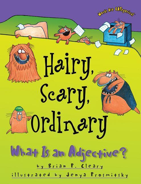 Hairy, Scary, Ordinary: What Is an Adjective? als Taschenbuch