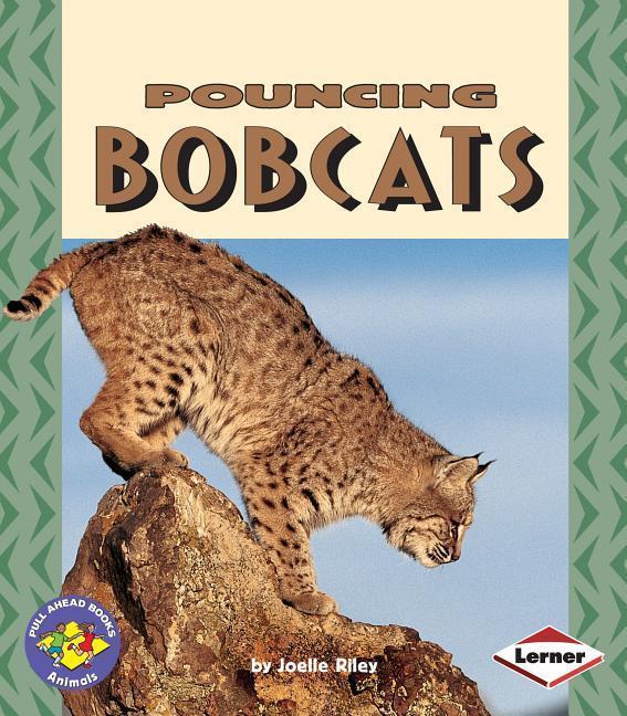 Pouncing Bobcats als Taschenbuch