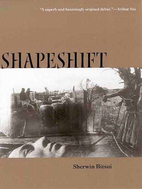 Shapeshift als Taschenbuch
