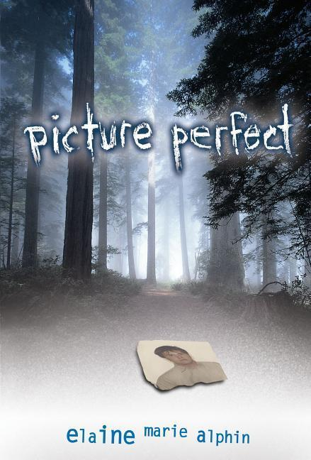 Picture Perfect als Buch